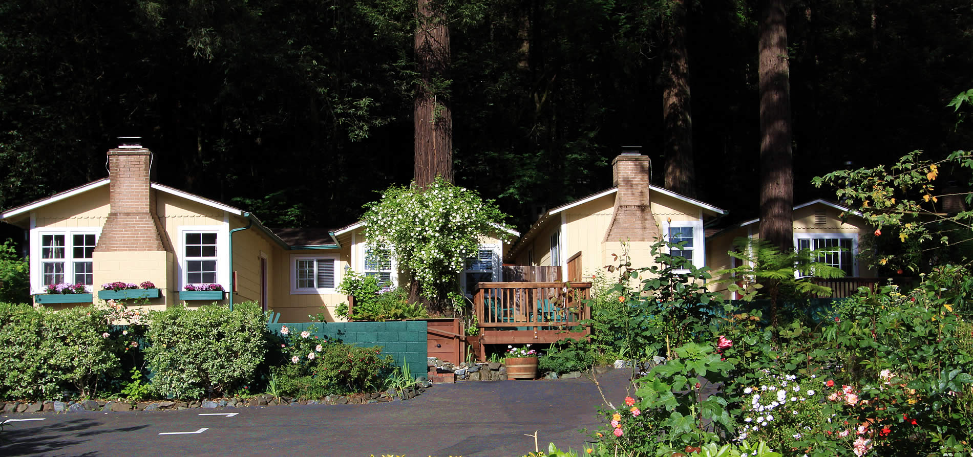 russian river vacation cottages