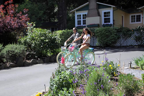 bicycles at fern grove cottages - russian river lodging in redwood forest