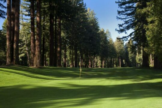 northwood golf course in the redwoods